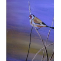 Goldfinch;16×16 inches;oil on canvas;€240