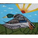 Mallard;oils on canvas;20×16 inches;for sale